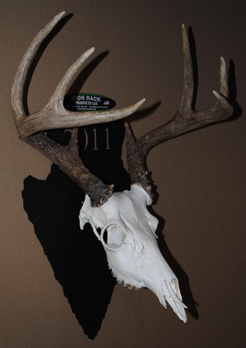 Deer statue - TheFind - TheFind - EVERY PRODUCT * EVERY STORE